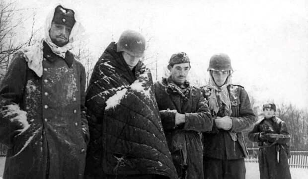 Сколько раз, по мнению западных историков, России помог «генерал Мороз», и почему это неправда
