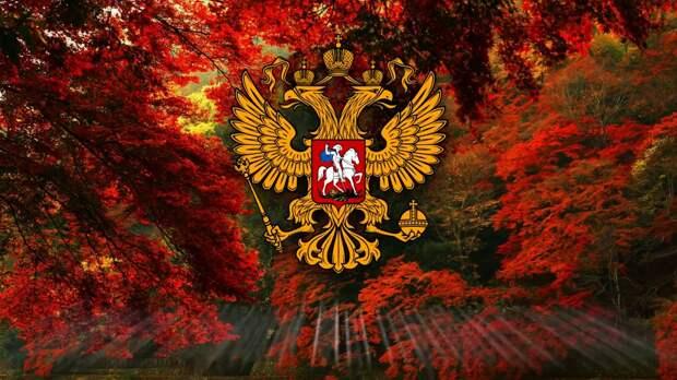 В Германии объяснили, почему Западные санкции бесполезны против России