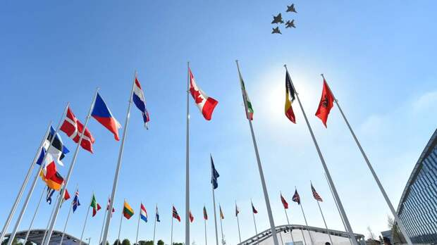 Издание Daily Beast назвало историческим решением разрыв дипотношений РФ и НАТО