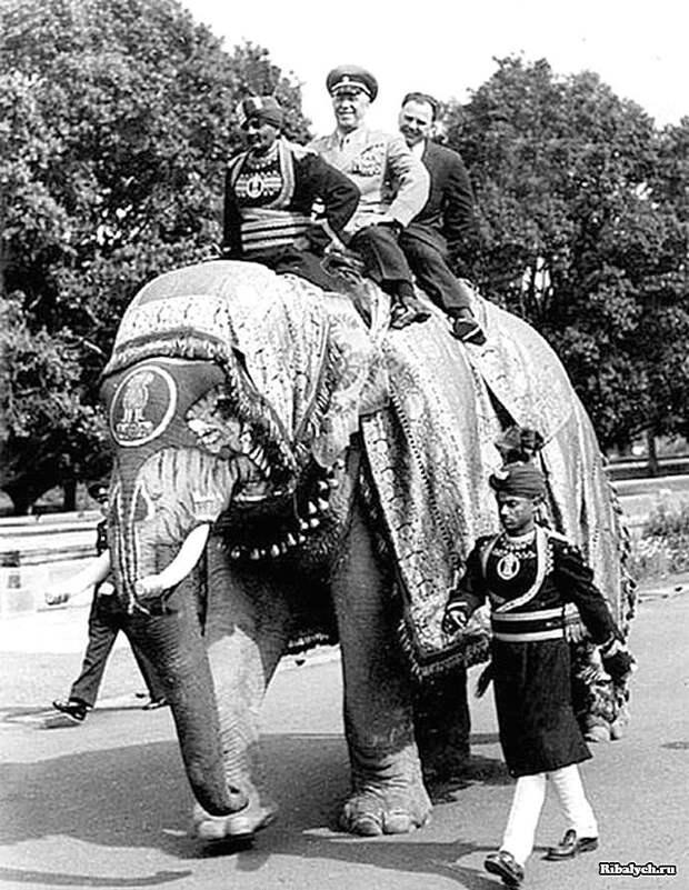 Маршал Жуков терпит дипломатические издевательства в Индии. 1957 г Весь Мир, история, фотографии