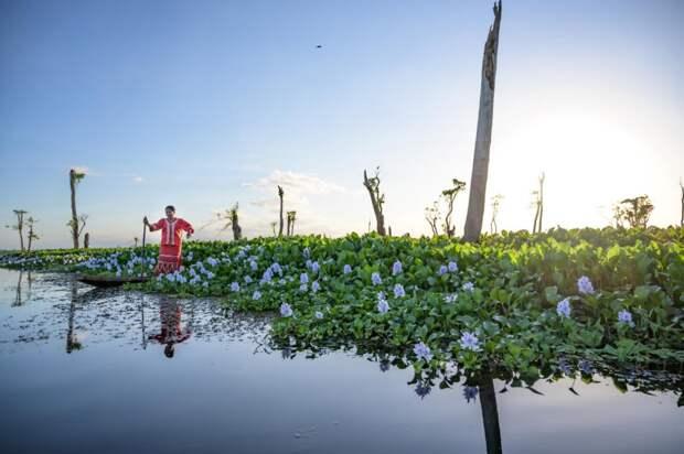 Водно-болотные угодья мира ускользают.