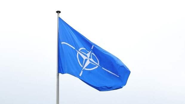 """Посол Украины в Берлине давит на Германию """"нацистским прошлым"""" для включения в НАТО"""