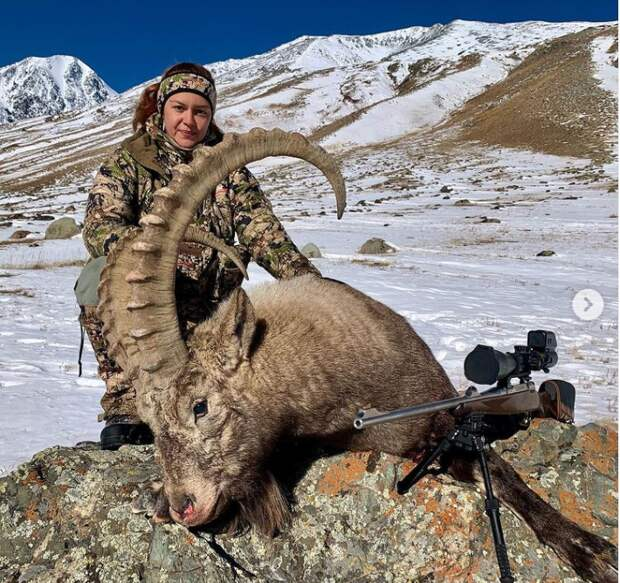 Блогер-охотница вызвала негодование постом об убийстве козерога в Горном Алтае. СК и полиция начали проверку