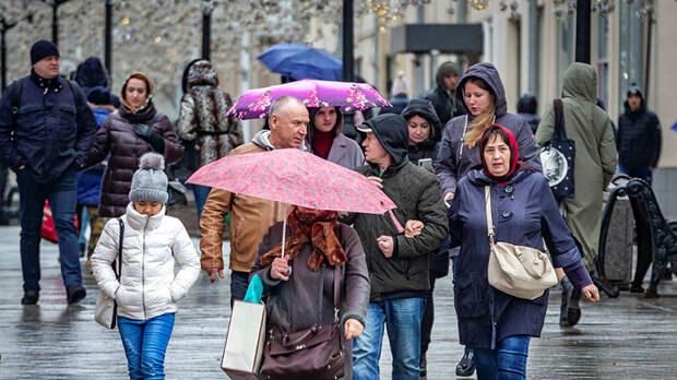 Вильфанд предупредил москвичей о мокром снеге с дождем