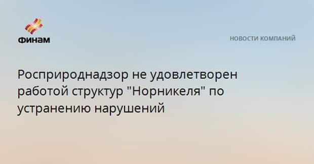 """Росприроднадзор не удовлетворен работой структур """"Норникеля"""" по устранению нарушений"""
