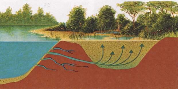 Исторические хроники зыбучих песков
