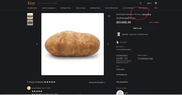 На WAYFAIR можно купить клубень картофеля за 52 тыс. долларов