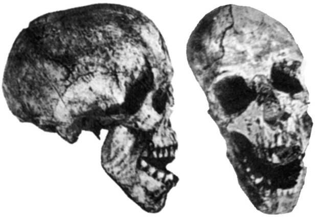 Люди современного анатомического вида жили на Земле более миллиона лет назад