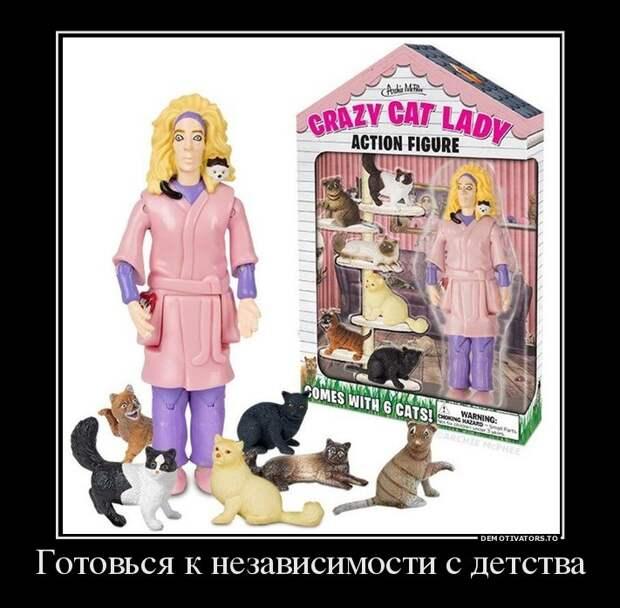 10.  авто, девушки, демотиваторы, коты, прикол, юмор