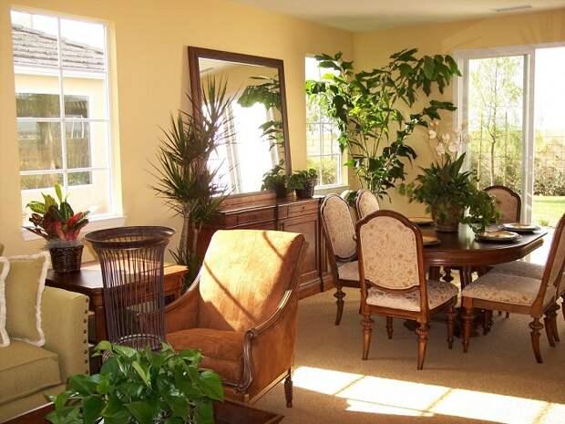 Отличная идея оформления зимнего сада, который будет радовать круглый год не только хозяев, но и гостей.