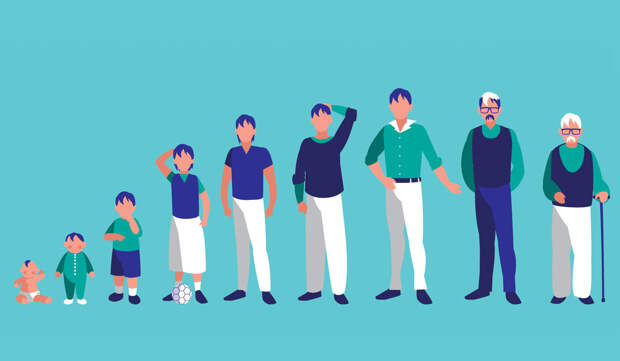 На сколько можно увеличить рост —в подростковом возрасте и во взрослом?