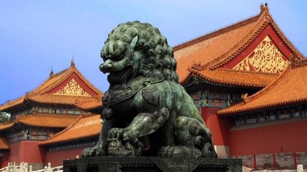 В Китае обнаружили «жуткую гробницу» династии Шан