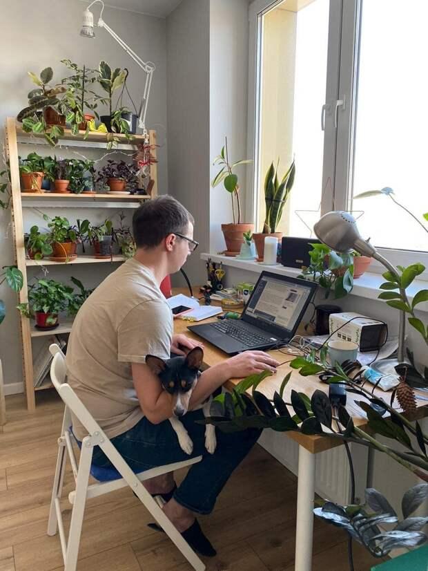 Как выглядят офисы тех, кто перешел на удаленку (ФОТО)