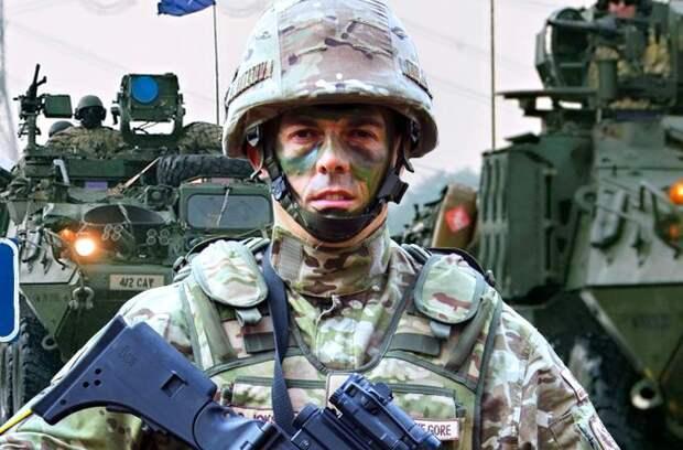 «Единственный смысл натовских учений Defender Europe – война с РФ» - Арестович