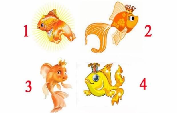 Выбирайте одну из этих Золотых рыбок, и узнаете когда исполнится ваша заветная мечта