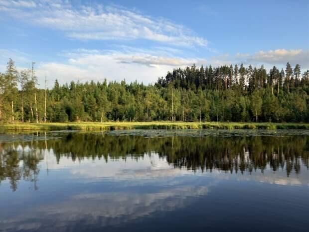 Прекрасные уголки Карельского перешейка. Три лесных озера в Лемболово
