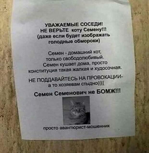 Эти объявления писали люди с явным чувством юмора)