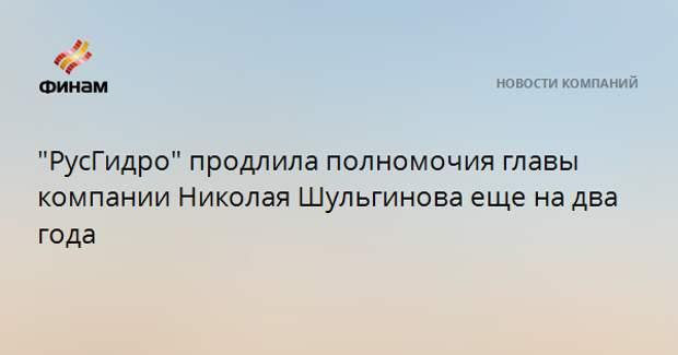 """""""РусГидро"""" продлила полномочия главы компании Николая Шульгинова еще на два года"""