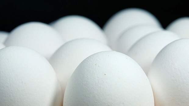 Британские медики назвали самый вредный способ приготовления яиц