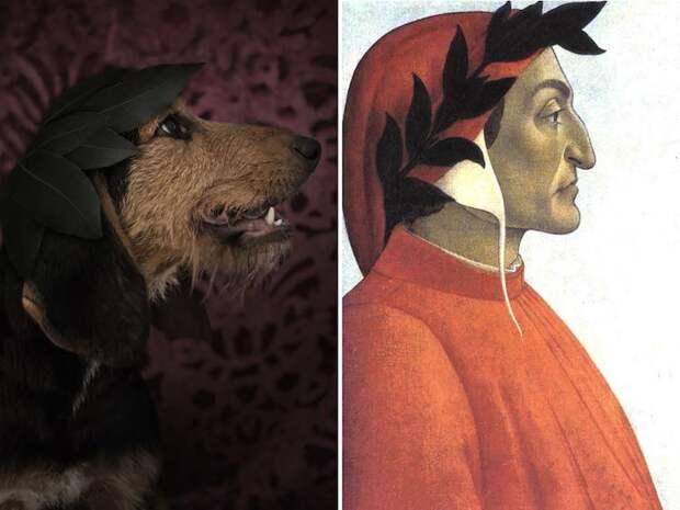 Известные писатели в истории и их двойники-собаки двойники, писатели, собаки
