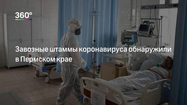 Завозные штаммы коронавируса обнаружили в Пермском крае