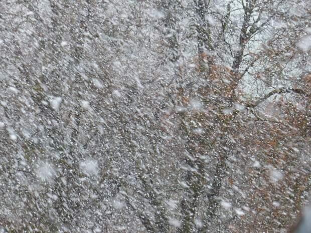 В раздевалке на катке в Северном снова будет тепло