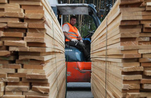 В России на 10% подешевела строительная древесина
