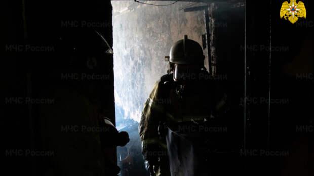 В МЧС рассказали подробности пожара в Барнауле, при котором погиб человек