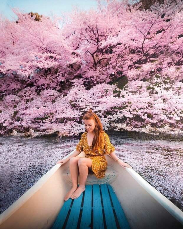 Позитивные фотографии и красивые картинки из сети