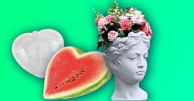 6 товаров для сада и огорода с Алиэкспресс по приятной цене