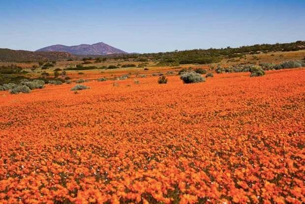 Намакваленд, Южная Африка путешествия, факты, фото