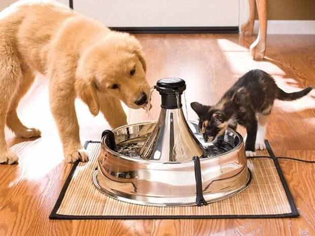 водяной фонтан, позволяющий вашему любимцу пить проточную воду игрушки для животных, коты, собаки