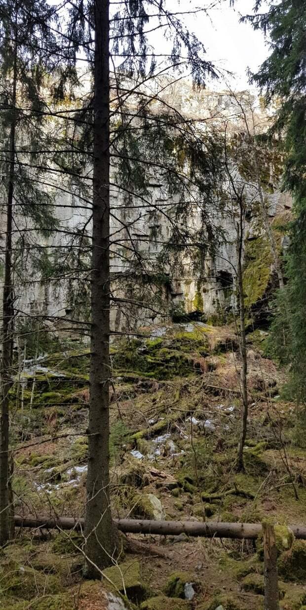 Скала Паасо в лесу