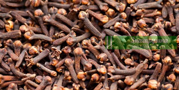 Что нужно есть, чтобы избавиться от паразитов: топ-8 продуктов
