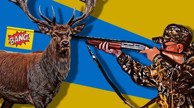 Как победить браконьерство в России? Ответ дальневосточного чиновника