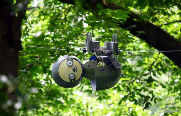 Робот-ленивец SlothBot выйдет на борьбу за экологию планеты