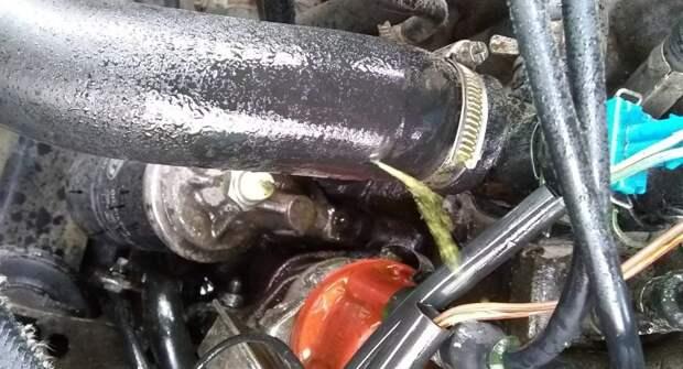 Почему лопаются патрубки и шланги системы охлаждения