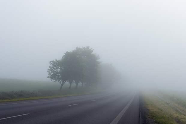 Ночью и утром 4 ноября по Удмуртии ожидается туман