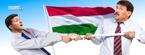 Президент Венгрии дал понять, что не поддерживает вхождение Закарпатья в состав Украины