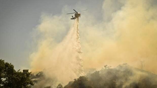 Ситуация с пожарами в США вышла из-под контроля — видео