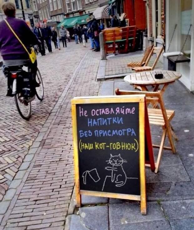 Прикольные таблички у баров и кафе (25 фото)