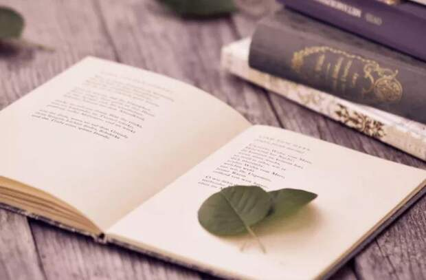 Книги лучше всего лечат от депрессии