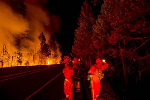 Беспощадный Королевский огонь Калифорнии
