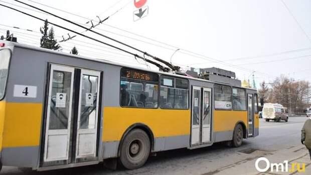 Для жителей омского Левобережья хотят запустить магистральные маршруты