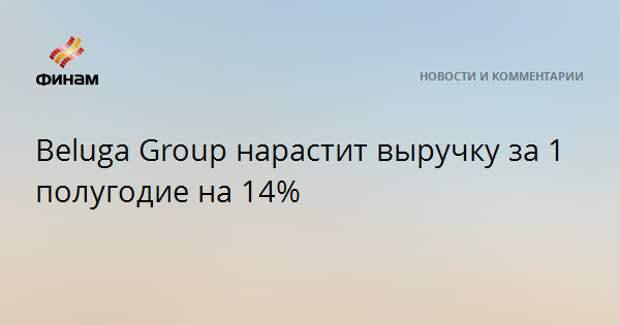 Beluga Group нарастит выручку за 1 полугодие на 14%