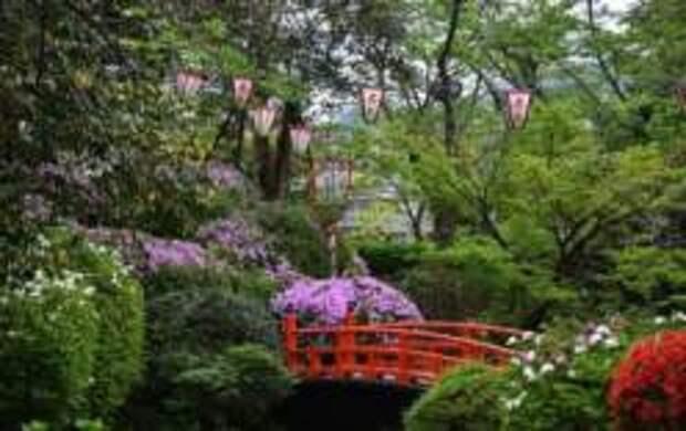 Прогулки по парку Уцубуки
