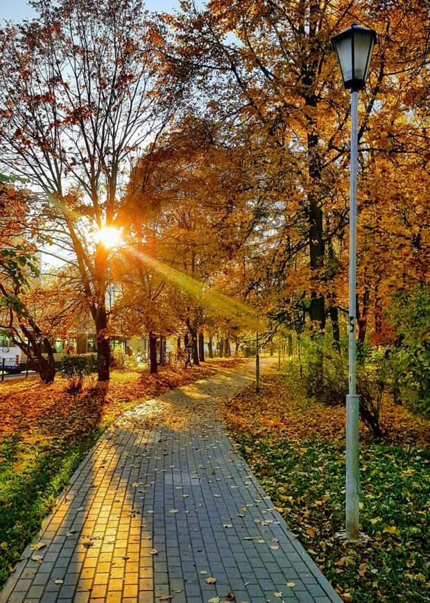 Фото дня: яркое утро на бульваре Яна Райниса