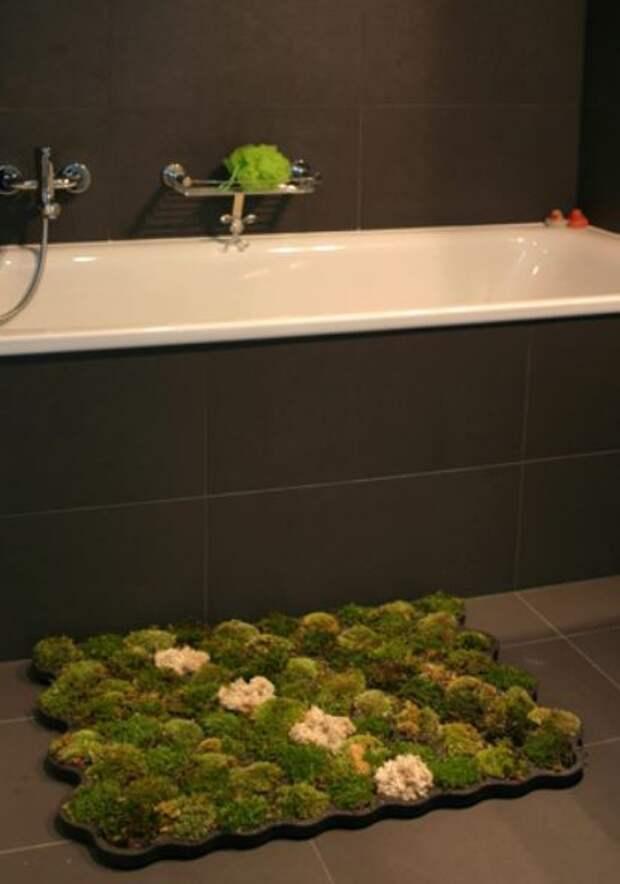 Необычности ванных комнат