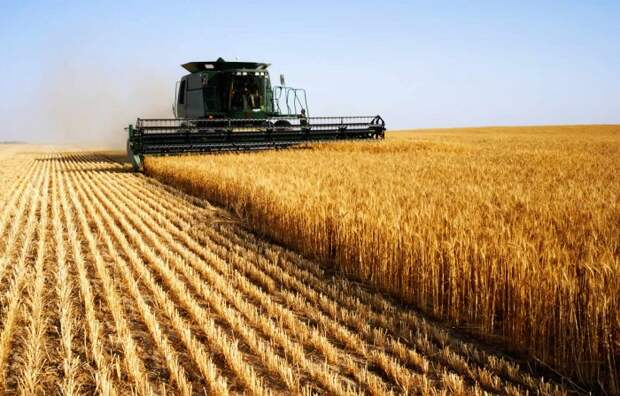 Россия бьет по Франции, «захватывая» ключевой рынок зерна