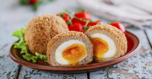 Яйца по-шотландски: вкусная закуска к празднику